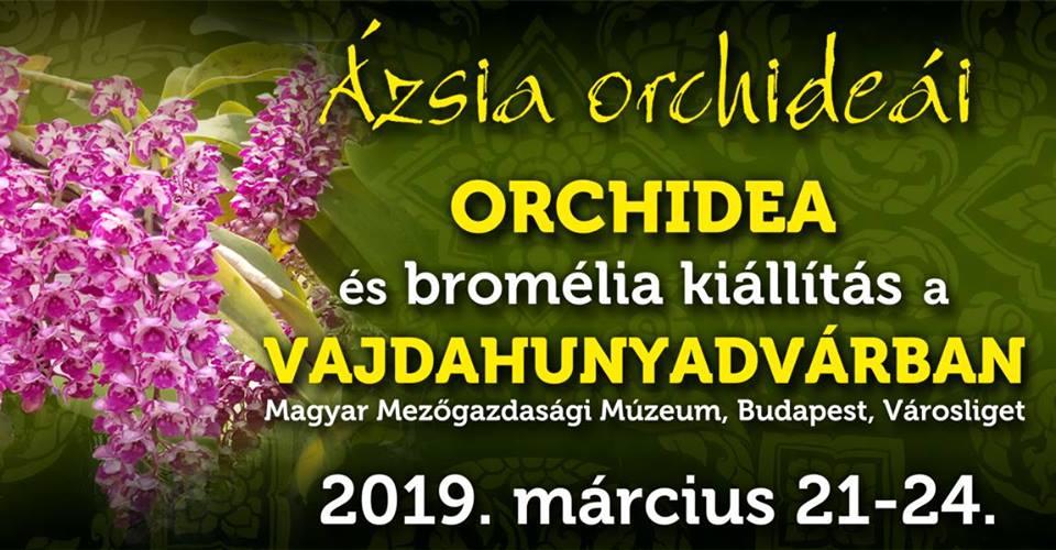 Tavaszi-orchidea-es-bromelia-kiallitas-es-vasar