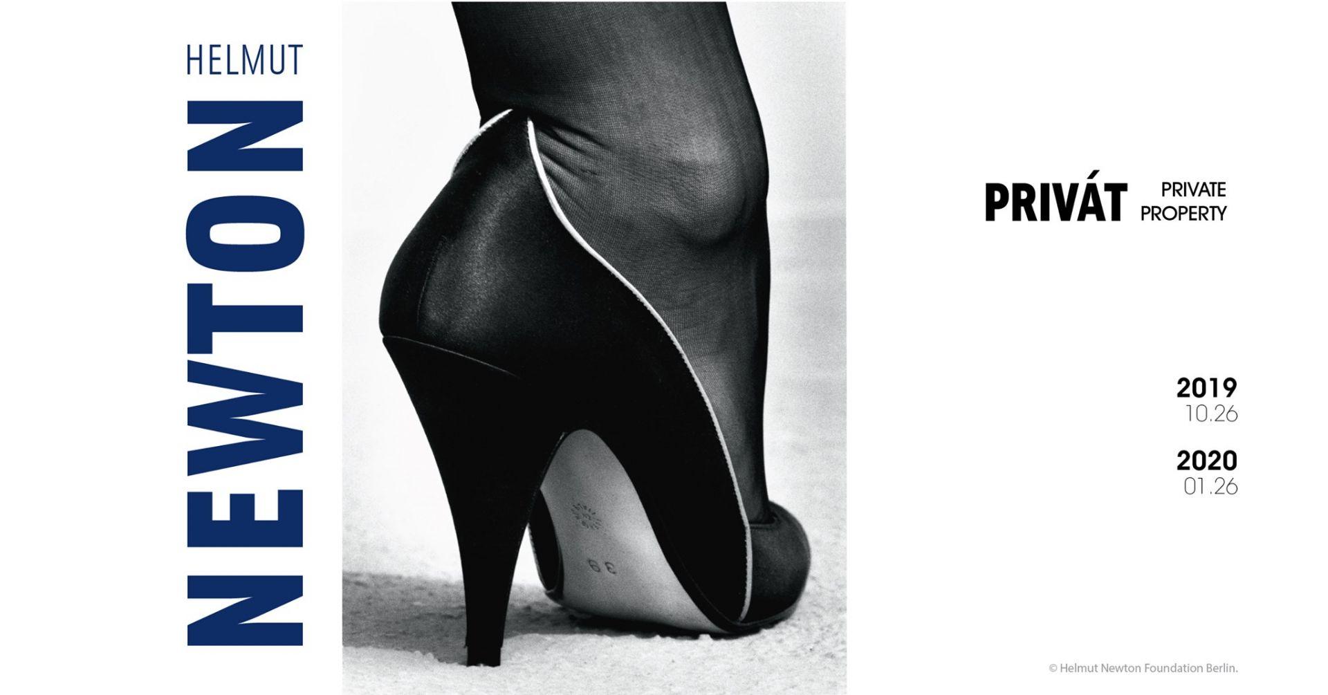 Helmut Newton divatfotói a MODEM-ben
